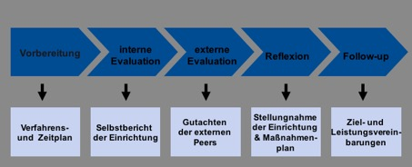Instituionelle Evaluation - Prozess