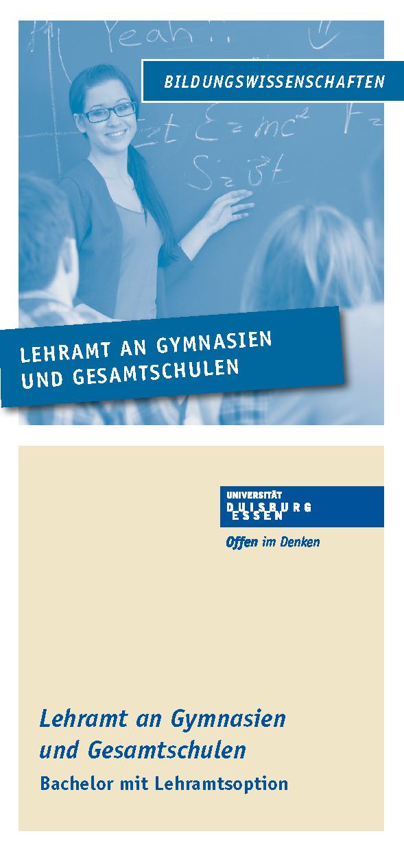 Informationen zum Studiengang als PDF-Download