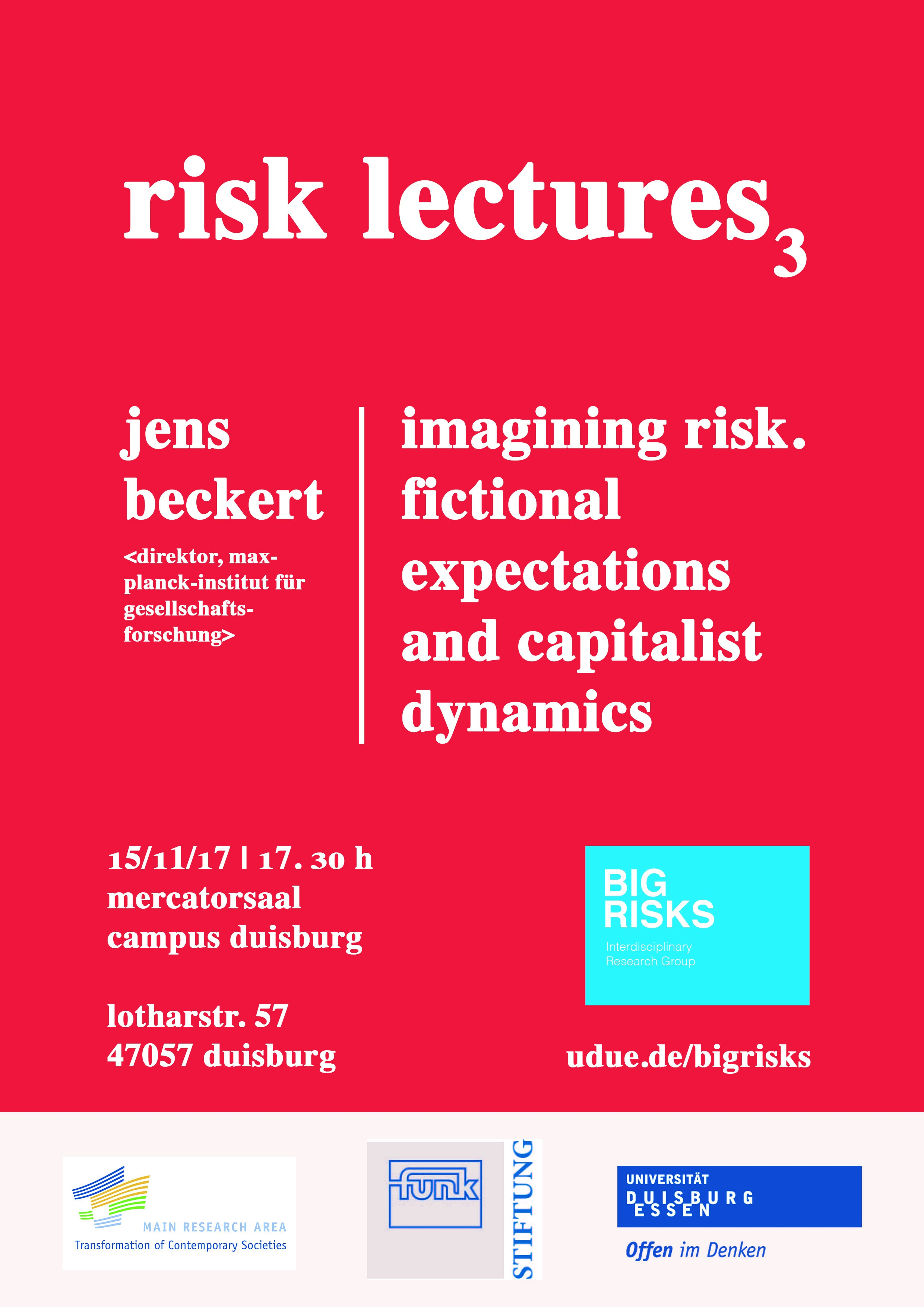 Imaging Risk  Fictional Expectations and Capitalist Dynamics