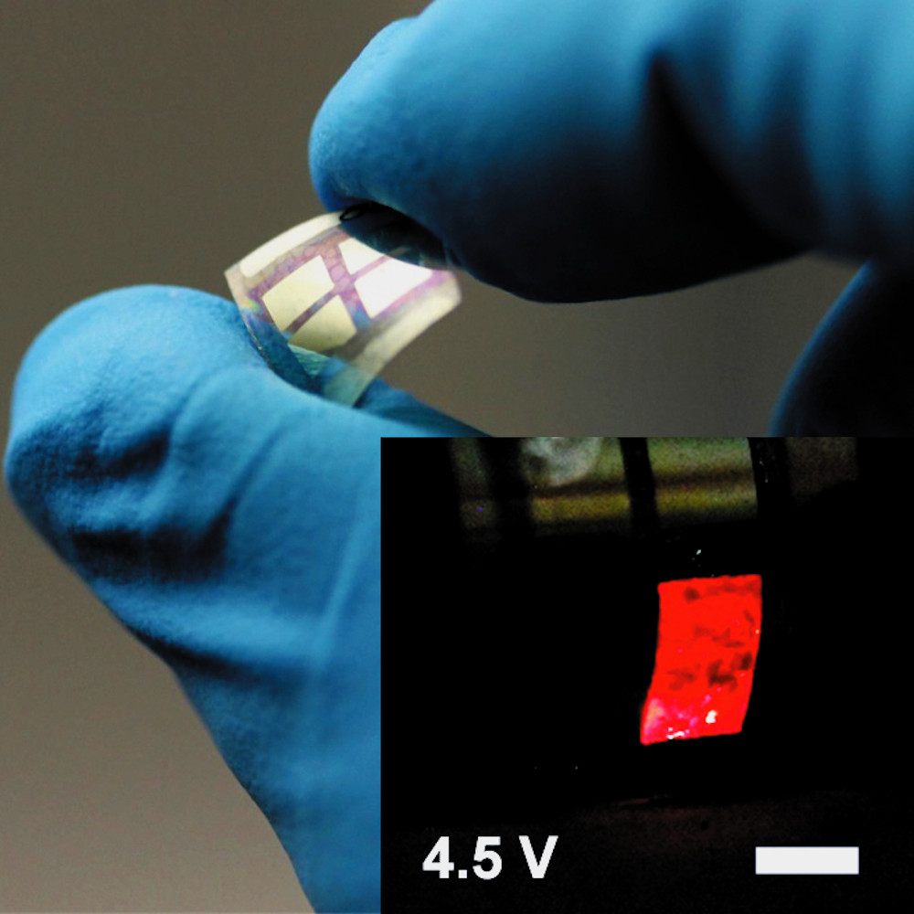 Flexible light emitting elements in 2D